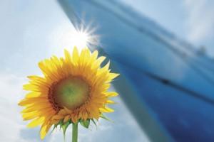 Staatliche Förderung solarer Batteriespeicher wird verlängert